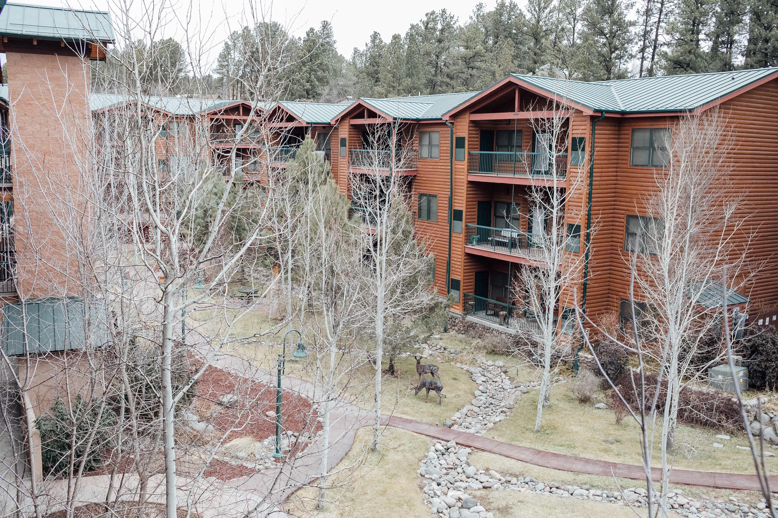 The Best Things to Do in Ruidoso, NM in Winter featured by top US travelb log, Walking in Memphis in High Heels: stay at the Ruidoso River Resort