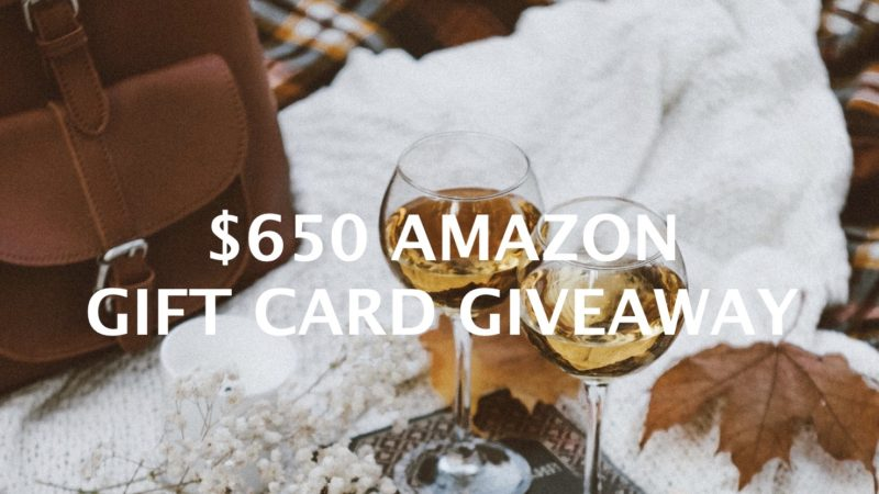 $650 Amazon Gift Card Giveaway hosted by top Memphis life and style blogger, Walking in Memphis in High Heels.